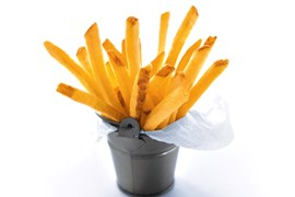 Stealth Fries Skin-on