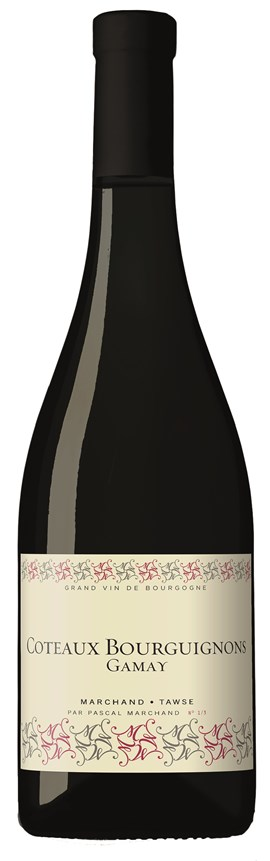 Marchand-Tawse Coteaux Bourguignons Gamay